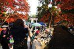 上賀茂神社 手づくり市 考察