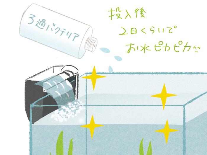 水槽のイラスト